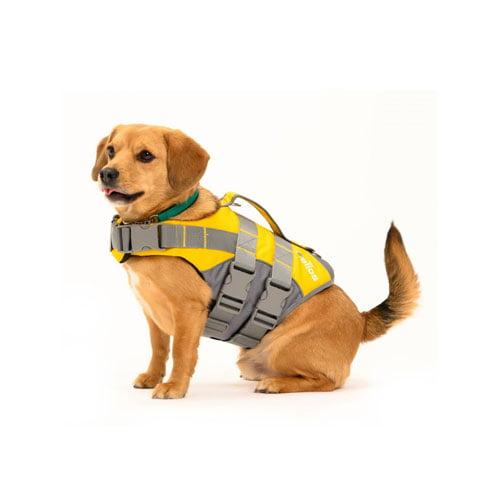 Foto av hund med Globus flytevest