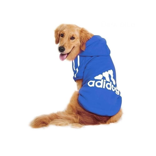 Miljøbilde av adidog hettegenser stor hund blå