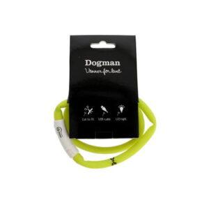 Produktfoto av LED-ring halsbånd til hund, grønn